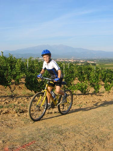 Rando des vendanges - Photo-065.jpg - biking66.com