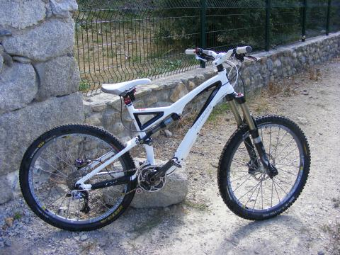 stumpy evo 2010? - slybiker - biking66.com